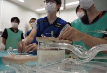 血管模型を用いた若手医師の実技指導の手元画像